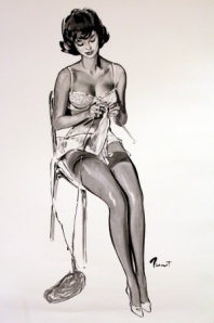 sexy kitting pin up