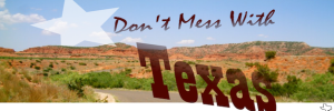 Don_t_Mess_With_Texas-628x210
